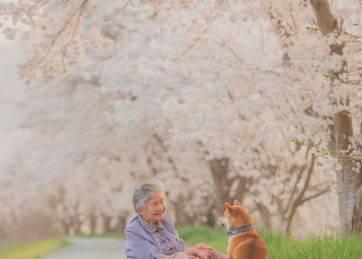 Yasuto's photos of his grandmother